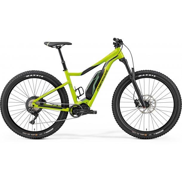 2019 eBig.Trail 600, Silk grøn (sort)